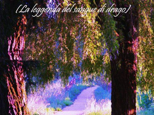 """Segnalazione di """"Quarzo (la leggenda del sangue di drago)"""" di Andrea Righi"""